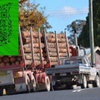 澳大利亚红铁木 铁力木红橡木 铁木原木招代理商
