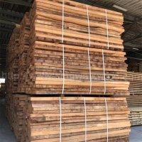 金威木业 进口欧洲榉木 实木板 毛边板材 榉木 木材 原材料