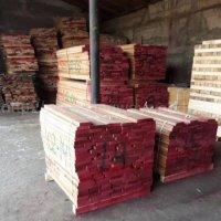 德国金威木业 欧洲榉木 直边板齐边 榉木 实木板 木板 板材