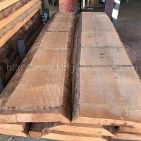金威木业欧洲榉木 山毛榉 榉木 实木板 毛边板 木板 木料